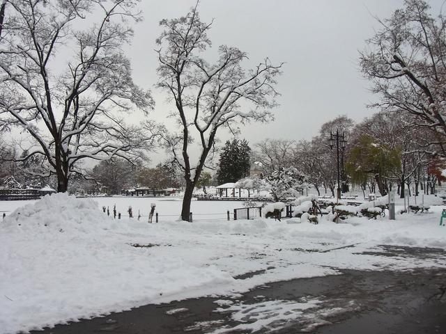 RIMG3011hc公園.jpg